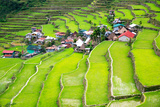 Rice Terraces in the Philippines the Village is in a Valley among the Rice Terraces Rice Cultivat