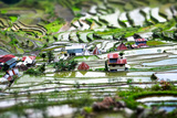 Amazing Tilt Shift Effect View of Rice Terraces Fields and Village Houses in Ifugao Province Mounta