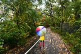 Autumn / Fall Concept - Woman Walking in Forest with Umbrella in Rain Girl Enjoying Rainy Fall Day