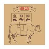Vintage Butcher Cuts of Beef Scheme Vector Illustration