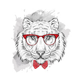Image Portrait Tiger in the Cravat and with Glasses Hand Draw Vector Illustration