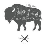 Vintage Butcher Cuts of Bison Buffalo Scheme Diagram
