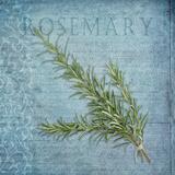 Classic Herbs Rosemary
