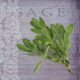 Classic Herbs Sage