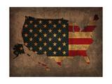 Usa Country Flag Map