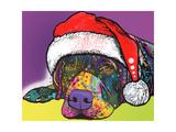 Savvy Labrador Christmas