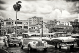 Cuba Fuerte Collection B&W - Vintage American Cars