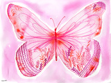 Big Pink Butterfly