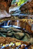 Mesmerizing & Beautiful Subway in Autumn at Zion National Park Utah