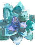 Watercolor Blue And Green Succulent 2