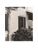 House and Grape Leaves  1934