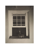 Doylestown House  Open Window  Negative about 1917