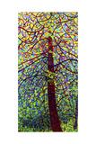 Kaléidoscope Reproduction d'art par Mandy Budan