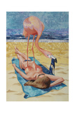 Flamingo On Sun Bather
