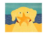 Starfish Yellow