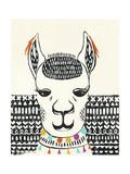 Party Llama IV