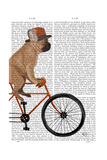 French Bulldog on Bicycle