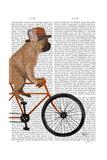 French Bulldog on Bicycle