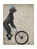 Poodle on Bicycle  Black