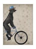 Poodle on Bicycle  Black