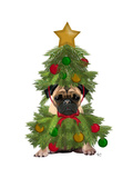 Pug  Christmas Tree Costume