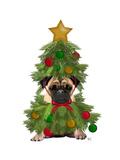 Pug  Christmas Tree Costume