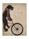 Schnauzer on Bicycle  Black
