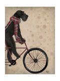 Schnauzer on Bicycle  Black