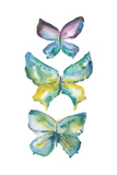 Jeweled Butterflies III