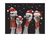 Ostrich  Christmas Gals