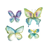 Jeweled Butterflies II