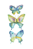 Jeweled Butterflies IV