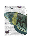Butterfly in Turquoise and Yellow A