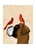 Boxer and Red Cardinals