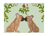 French Bulldogs and Mistletoe