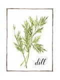 Watercolor Herbs III Reproduction d'art par Grace Popp