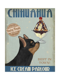 Chihuahua  Black and Ginger  Ice Cream