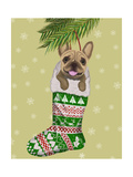 French Bulldog in Christmas Stocking