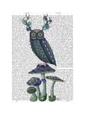 Owl on Mushrooms