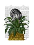 Loris on Pineapple