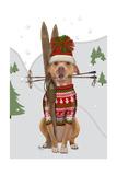Pitbull Skiing