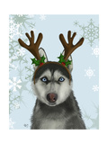 Husky and Antlers