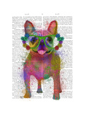 Rainbow Splash French Bulldog  Full