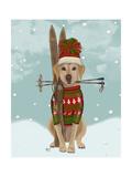 Yellow Labrador  Skiing
