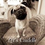 Wonder Lets Cuddle Sq Script