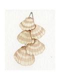 Coastal Holiday Ornament II Reproduction d'art par Kathleen Parr McKenna
