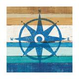 Beachscape IV Compass
