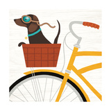 Beach Bums Dachshund Bicycle I