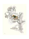 Carols Roses IV Tan