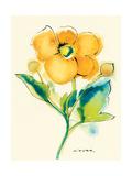 Flores Rojas V